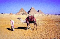 El Cairo, ciudad árabe capricho de los occidentales