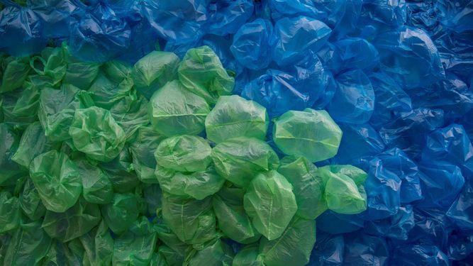 Asamblea aprueba proyecto para que Acodeco imponga multas por uso de bolsas plásticas