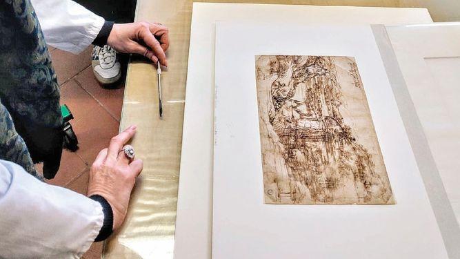 Análisis al dibujo de Leonardo revela su proceso creativo
