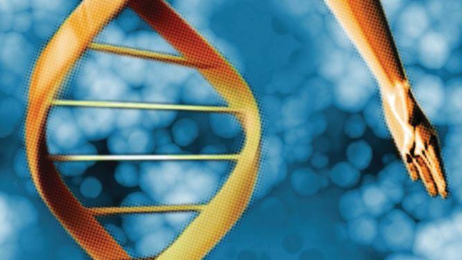 Rechazan estudio de modificación de genes